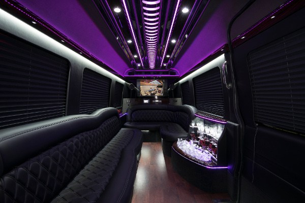 12 passenger sprinter in Indianapolis Interior