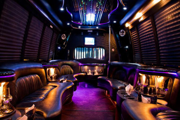 15 person party bus rental Indianapolis